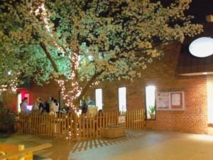Westover Beer Garden, Arlington, VA