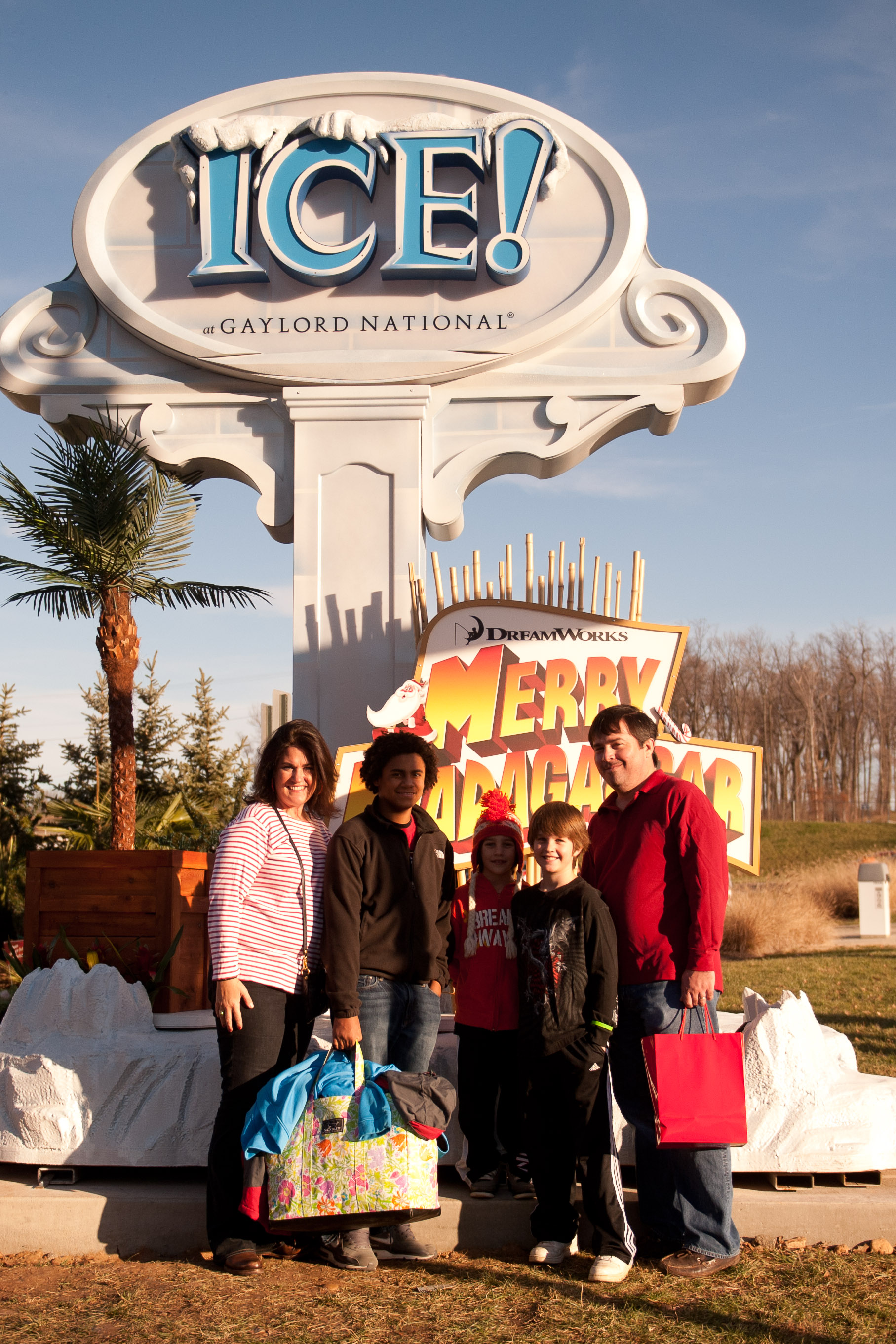 Don't Miss Holiday Family Outing: ICE! | THE DC MOMS