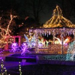 My Favorite Place (with Lights!) in DC: Brookside Gardens