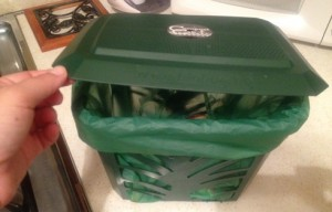 green counter top compost bin