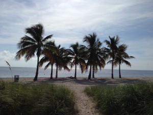 Isn't Miami gorgeous? I had forgotten how beautiful (and hot!) it is there.