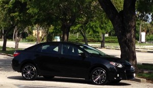 Our temporary Corolla S parked under a tree at Crandon Park.