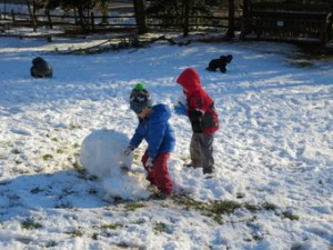 Country Day School McLean snow
