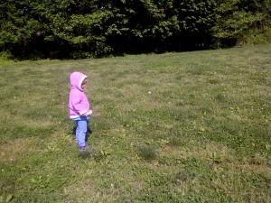 Washington Waldorf School outdoor Sun Garden program - open field