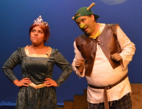 How Shrek: The Musical saved my summer