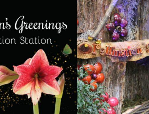 "Bee-utiful ""Pollination Station"" Exhibit at U.S. Botanic Garden"