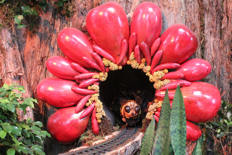 US-Botanic-Garden-Pollinators-2015-Jessica-Claire-Haney