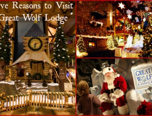 Family Travel: Five Reasons to Visit Great Wolf Lodge