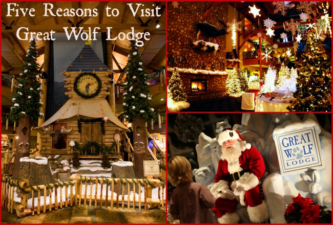 family travel five reasons to visit great wolf lodge