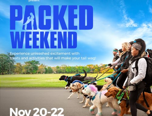 Join Us For Packed Weekend, The Pack TV Premiere