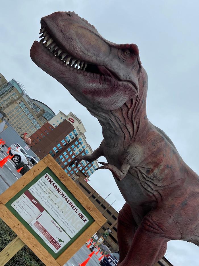 Dino Safari: T-rex